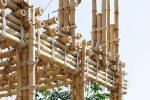 Бамбук в строительстве